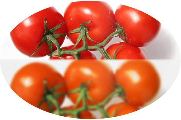 orangea tomater
